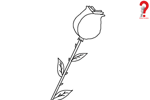 Draw A Rose Flower Easy