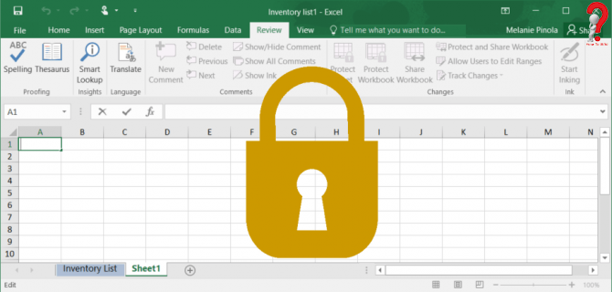 how to lock Excel Cells