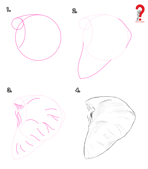 Draw Elephant Ears