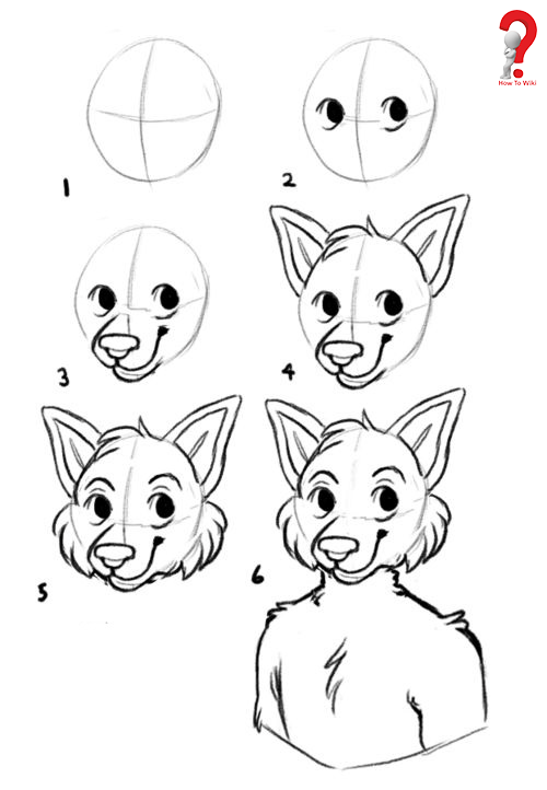 How to Draw Furry Heads