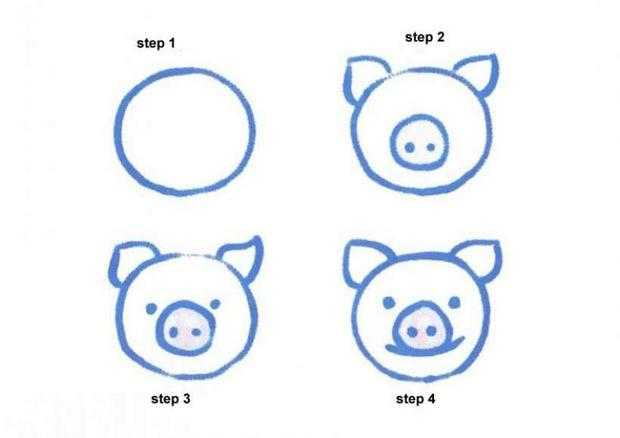 Easy Steps To Draw a Pig