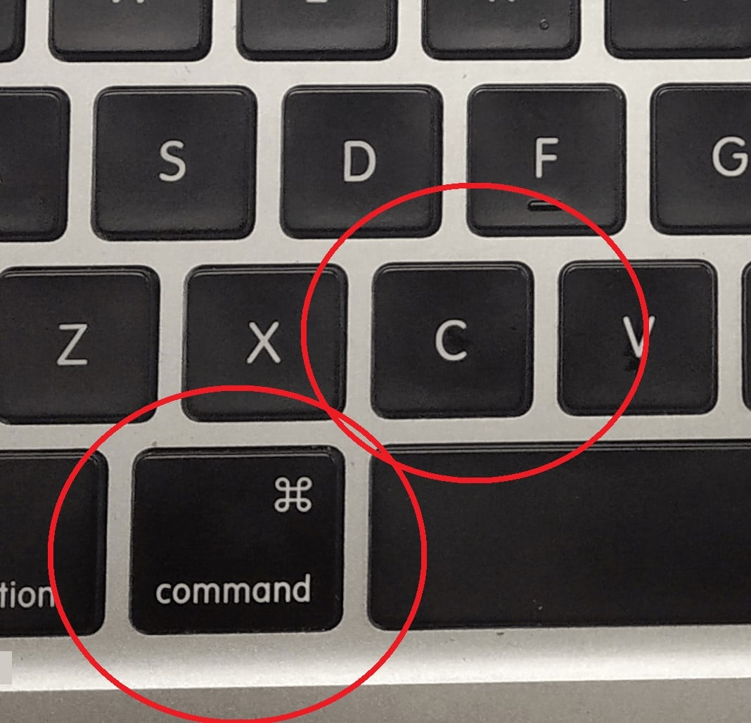 How To Copy A Picture On A Mac